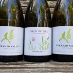 Pyramid Valley – 2020 White Wine Releases