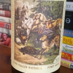The Hare and the Tortoise Pinot Gris 2020