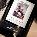 Two Hands Gnarly Dudes Barossa Valley Shiraz 2019